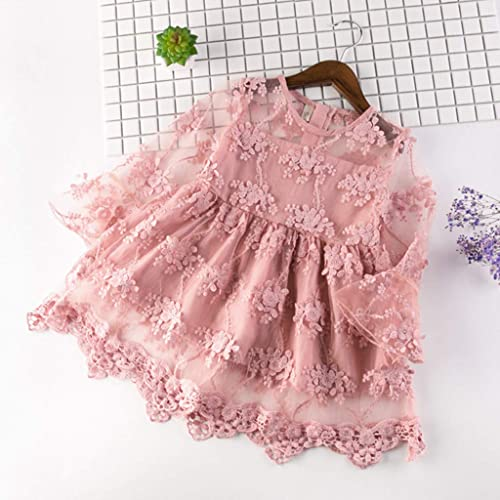 WOCACHI Toddler Baby Girls Dresses Kids Baby Girls Embroidery Tulle Party Wedding Pageant Princess Dresses
