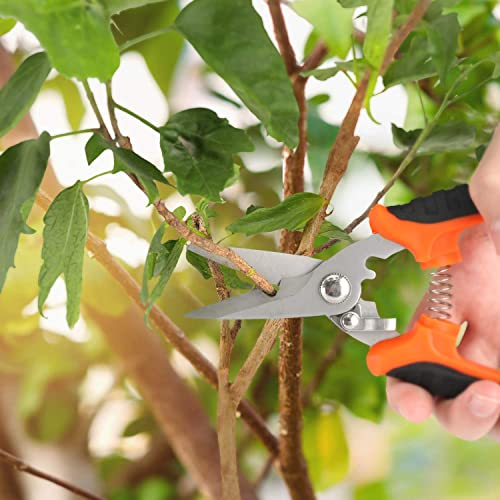 ELVPPE Gardening Pruner Pruning Shear with Stainless Steel Blades and Spring Loaded Shears Scissors Home Garden Yard Kitchen Pruning Flower Clipper with Safety Lock(1pack Straight