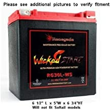 800 800R 1000R NICHE AGM Battery for YTX20HL fits Can-Am Commander 1000