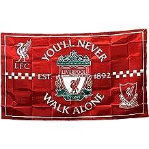 128-XXL Trikot New Balance FC Liverpool 2019-2020 Third PL Virgil van Dijk 4